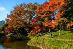 Koishikawa Korakuen Garden in Autumn in Tokyo Stock Photo
