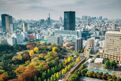Koishikawa Korakuen Garden and modern buildings at autumn in Tokyo, Japan