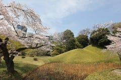 Koishikawa Korakuen Garden at spring royalty free stock photos