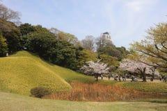 Koishikawa Korakuen Garden at spring stock photos