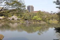 The Koishikawa Korakuen Garden Stock Images