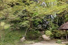 Koishikawa Korakuen ogródu krajobraz Fotografia Royalty Free