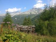 Koja i bergen i lantgård för Bayern Österrike Tyrol Tysklanddagbok Arkivfoton