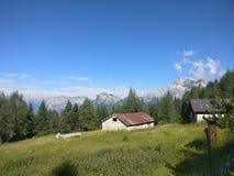 Koja i bergen i lantgård för Bayern Österrike Tyrol Tysklanddagbok Royaltyfri Foto