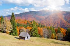 Koja i en bergskog Autumn Landscape Arkivbild