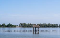 Koja och staket i floden Fotografering för Bildbyråer
