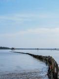 Koja och staket i floden Arkivbilder