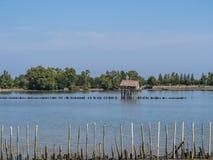 Koja och staket i floden Arkivfoton
