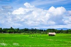 Koja, risfält och molnig himmel Arkivbild