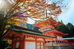 Kojyoin Tsukimido in Achi village, Nagano, Japan Stock Photography