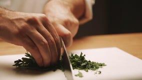 Kok die maaltijd voorbereiden bij de keukenlijst Sluit omhoog stock video