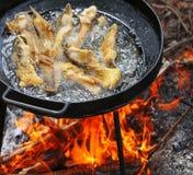 Koka i olja på öppnad brand som steker fiskfilén Royaltyfri Bild