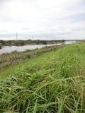 Kokai River and autumn sky Royalty Free Stock Photo