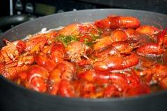 kokande crawfish royaltyfri foto