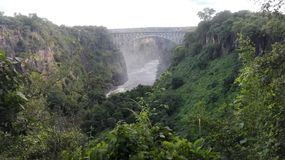 Kokande kruka Zambezi River Zambia Arkivbilder