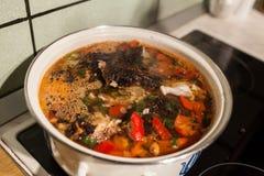 kokande soup Fotografering för Bildbyråer