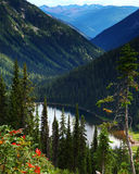 Kokanee Glacier Provincial Park, British Columbia, Canada Royalty Free Stock Photos