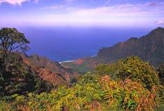 Kokee Stae park Scenic Kauai Stock Photos