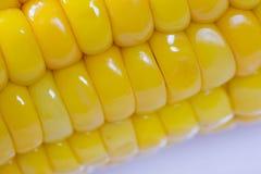 _koken en koken geel zoet suikerma?s ma?skolf dicht omhoog schietenen macro Het heerlijke kijken royalty-vrije stock foto's