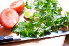 Kokend Mexicaans voedsel: tomaten, korianderkoriander en kalk Stock Foto