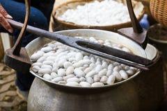 Kokende cocon in een pot Royalty-vrije Stock Afbeeldingen