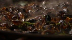 Kokende en bewegende mosselen bij grote pan stock videobeelden
