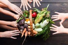 Kokende groentesoep, organische vegetarische cursus Detoxingredi?nten stock foto's