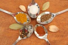 Kokende kruiden Voedselkruiden Kruiden in theelepeltjes Royalty-vrije Stock Fotografie
