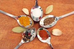 Kokende kruiden Voedselkruiden Kruiden in theelepeltjes Stock Foto