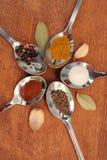 Kokende kruiden Voedselkruiden Kruiden in theelepeltjes Royalty-vrije Stock Afbeelding