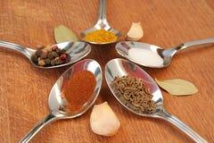 Kokende kruiden Voedselkruiden Kruiden in theelepeltjes Stock Afbeelding