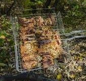 Kokende varkensvleesribben op de brand Kebab op de grill, barbecue met een vlam in aard Zachte nadruk stock afbeeldingen
