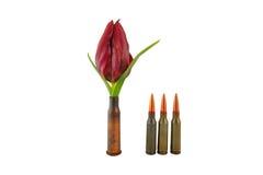 Koker met een bloem en drie kogels Stock Foto's