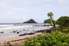 Koki Beach på vägen till Hana Arkivfoton