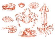 Kokkonst, krabba och tioarmad bläckfisk för rå skaldjur royaltyfri illustrationer