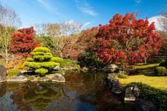 Koko-en fall garden in Himeji Stock Photos