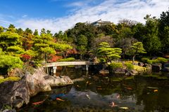 Koko-en Garden with Himeji castle in autumn. Koko-en Garden with autumn leaf, carp fish on pond, and Himeji castle in Hyogo Prefecture, Japan royalty free stock photos