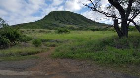 Koko Head Crater, Oahu Hawaï Image stock