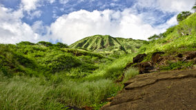 Koko head on Oahu, Hawaii Royalty Free Stock Photography