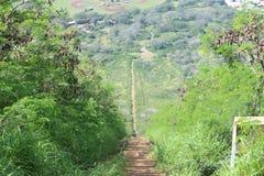 Koko Head Trail Fotografía de archivo libre de regalías