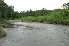 Kokoda轨道 库存照片