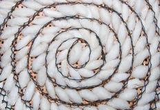 kokonu deseniowa jedwabnika spirala Zdjęcie Royalty Free