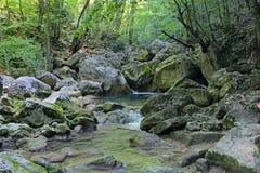 Kokoska-Fluss Lizenzfreie Stockfotos