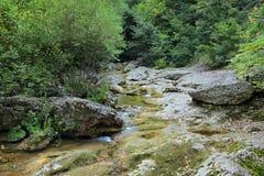 Kokoska river Stock Photography