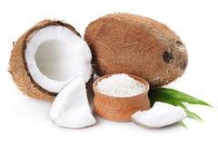 Kokosnöt Arkivfoto