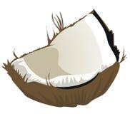 kokosnöt vektor illustrationer