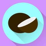 Kokosnöt för symbol för vektorrundalägenhet Royaltyfri Bild