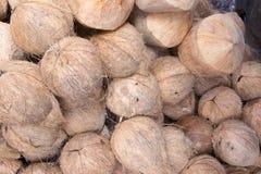 Kokosnöt i marknaden Arkivbilder