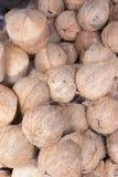 Kokosnöt i marknaden Arkivfoton