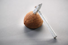 Kokosnöt med en bulta Arkivfoton